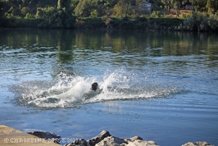 10 IMG_1169  310px