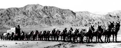 3a 20_Mule_Team_in_Death_Valley